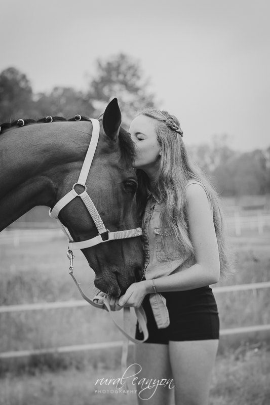 horse and rider-1