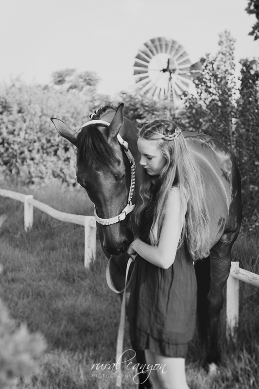 horse and rider-15