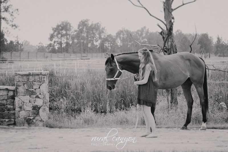 horse and rider-6