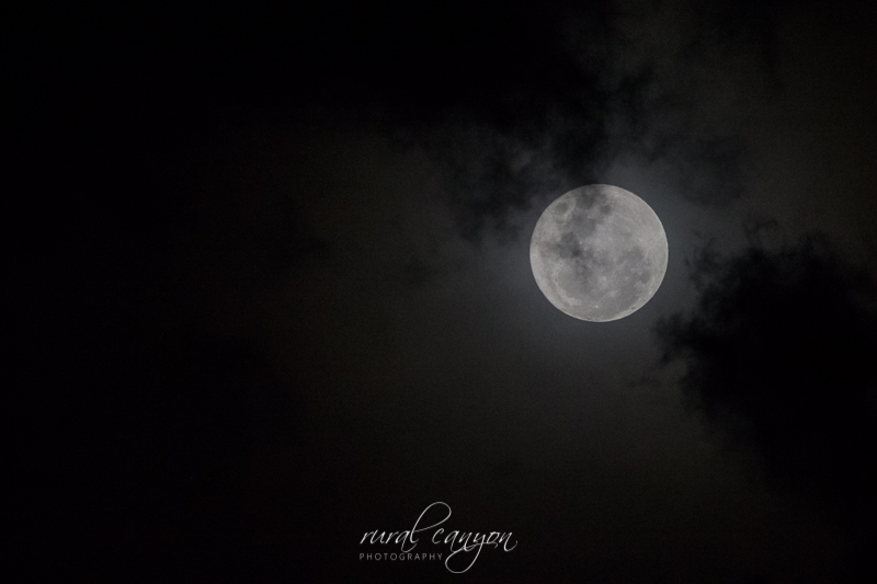 supermoon-nov-2016-8
