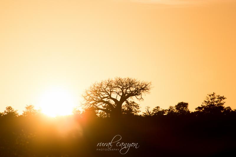 sunset and sunrise-10