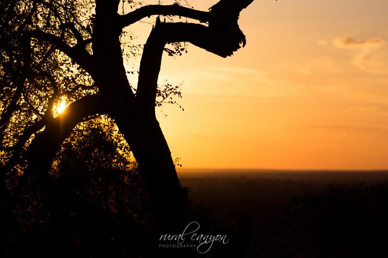 sunset and sunrise-22