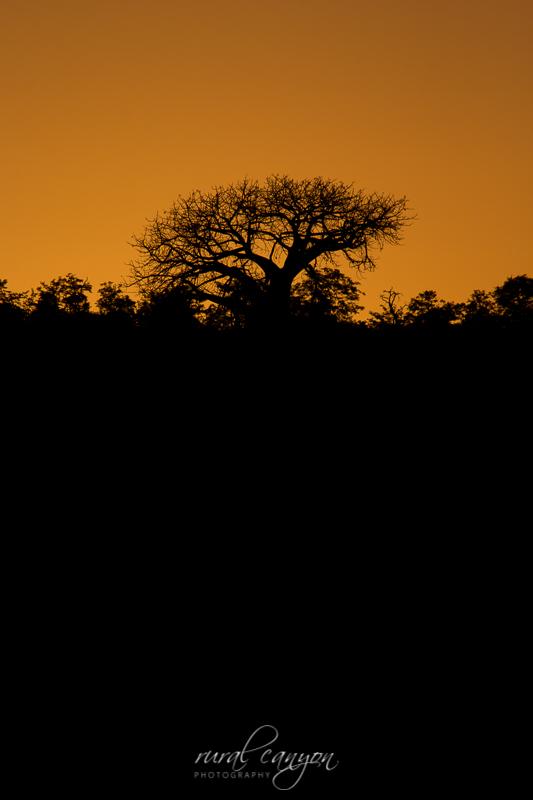sunset and sunrise-5