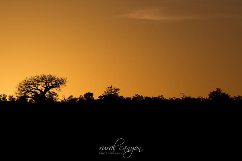 sunset and sunrise-7
