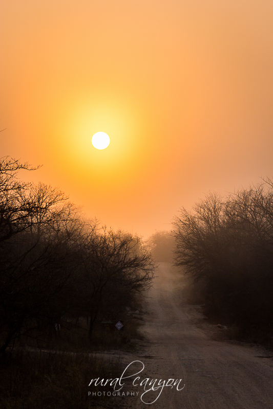 Sunrise in mist-1-2