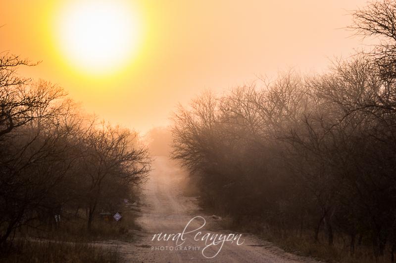 Sunrise in mist-2