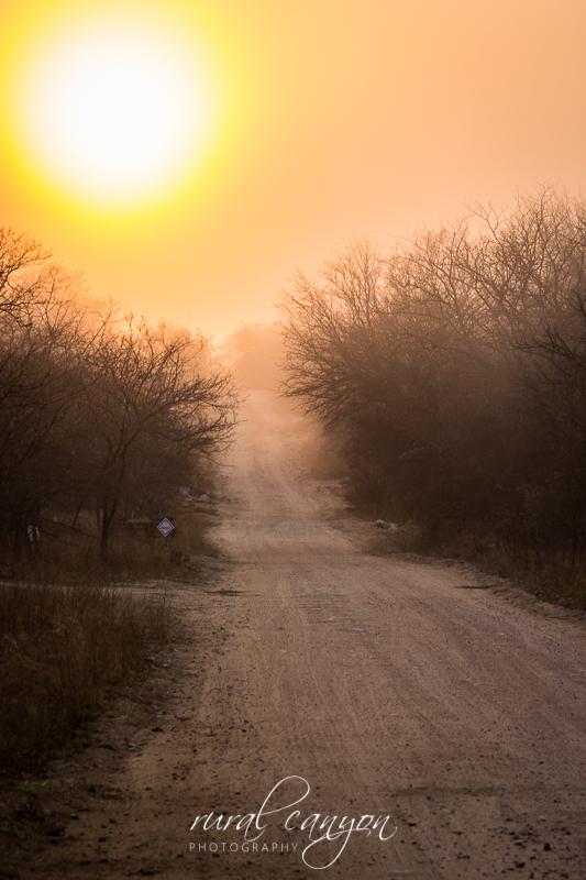 Sunrise in mist-3