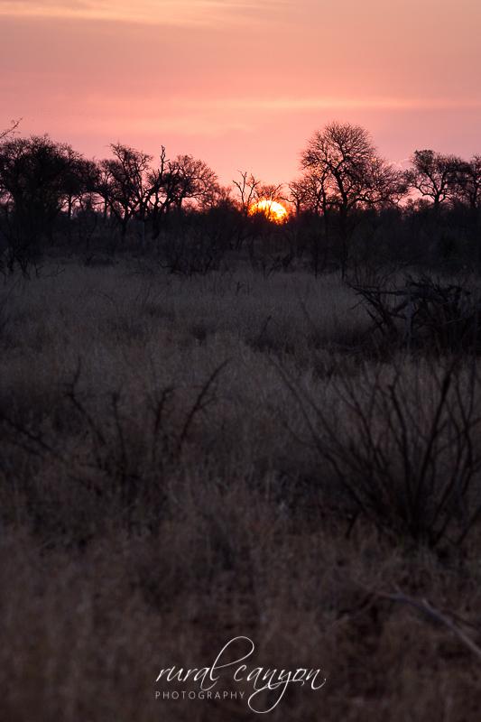 Sunset Kruger-3