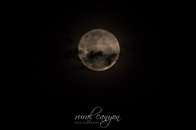Supermoon Dec-10