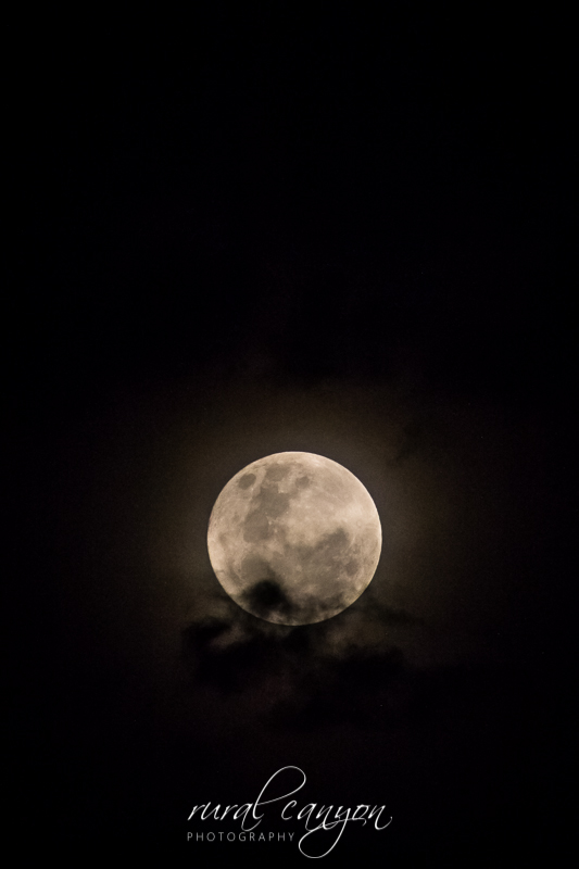 Supermoon Dec-13