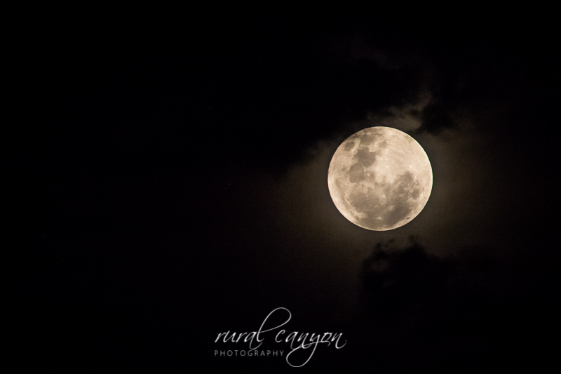 Supermoon Dec-15