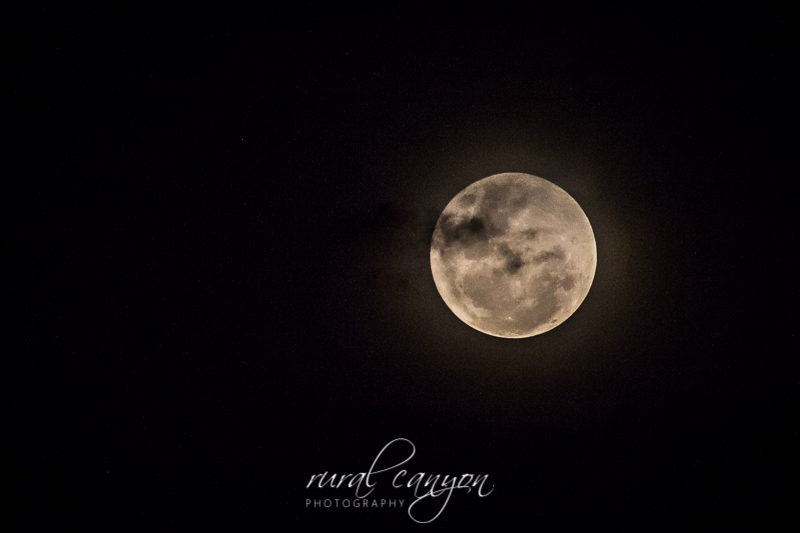 Supermoon Dec-8