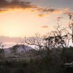 Sunrises and Sunsets: Stonehaven